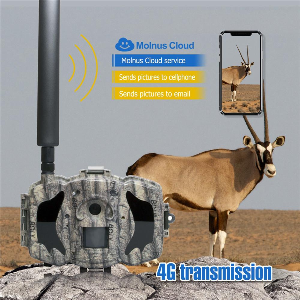 BolyGuard MG984G-36M 4G Trail Camera with Cloud APP 1